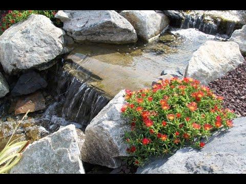 Le Bassin de jardin de Didier en cours de finition