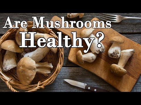 Are Mushrooms Healthy?