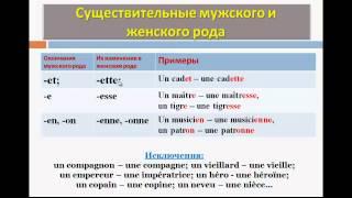 Уроки французского #29: Род и число существительного