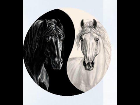 DARK HORSE ВЛОЖИЛ 1052 РУБ. В #DARK HORSE