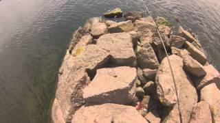 рыбалка на финском заливе 2015