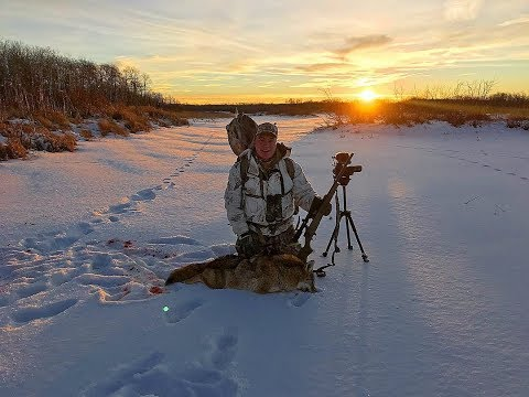 Manitoba Predator Calling