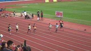 荃灣區分齡賽2016(田灣始南)栢言60米初賽