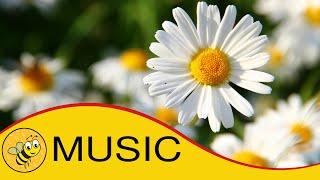 Bright Cheerful Happy Music For Children | Playtime Music