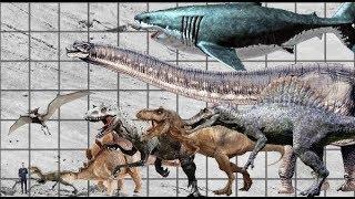 Dinosaurs Size Comparison