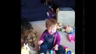 vines 2014 funny videos