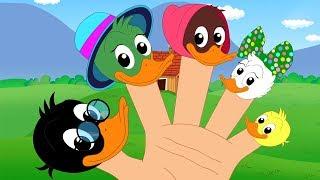gia đình ngón tay vịt | nhac thieu nhi hay nhất | Duck Finger Family | Kids Tv Channel Vietnam