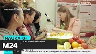 В Москве открывается крупнейший в мире фестиваль науки - Москва 24