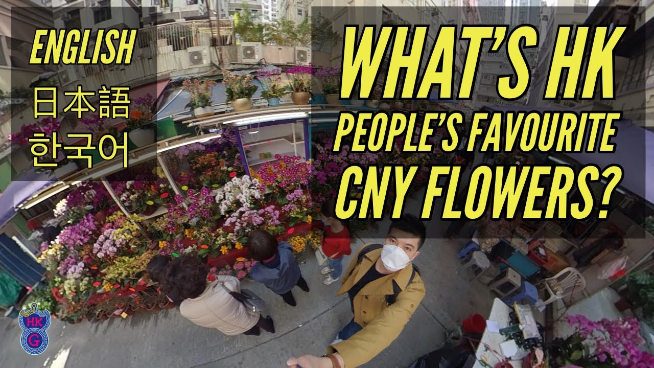 What is Hong Kong people's favourite Chinese New Year flower?