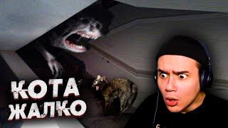 10 Страшных Видео, Когда Домашние Животные Увидели Призрака |