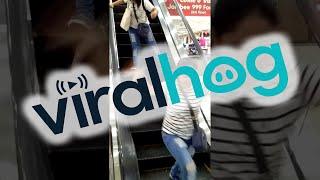 Rats on Escalator || ViralHog