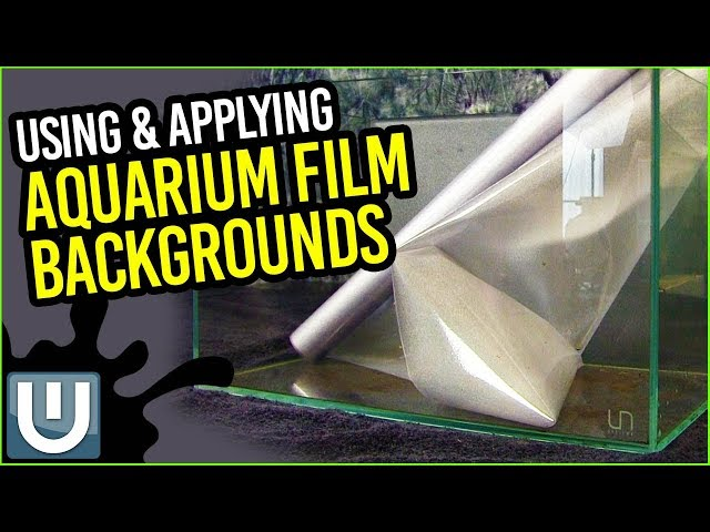 Aquarium Film Background - It's Just TOO Easy!