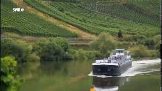 SWR fahr mal hin: Goldene Ufer - Herbstzauber an der Mittelmosel