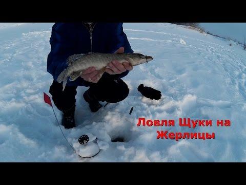 Ловля Щуки на Жерлицы и Живца Зимой 2017 – Рыбалка Видео