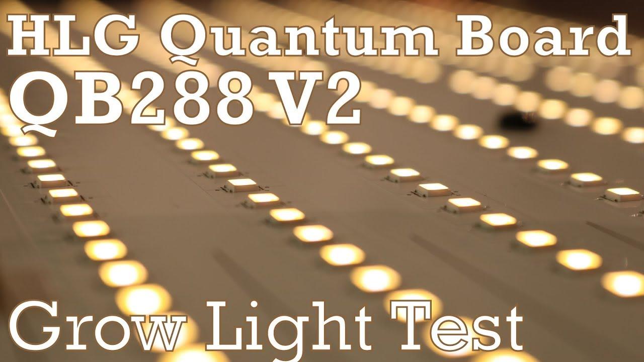 HLG Quantum Board grow light test - Horticultural Lighting Goup QB288 V2