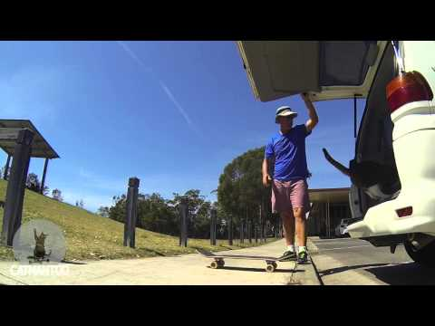 CAT Skateboarding Trick by DIDGA