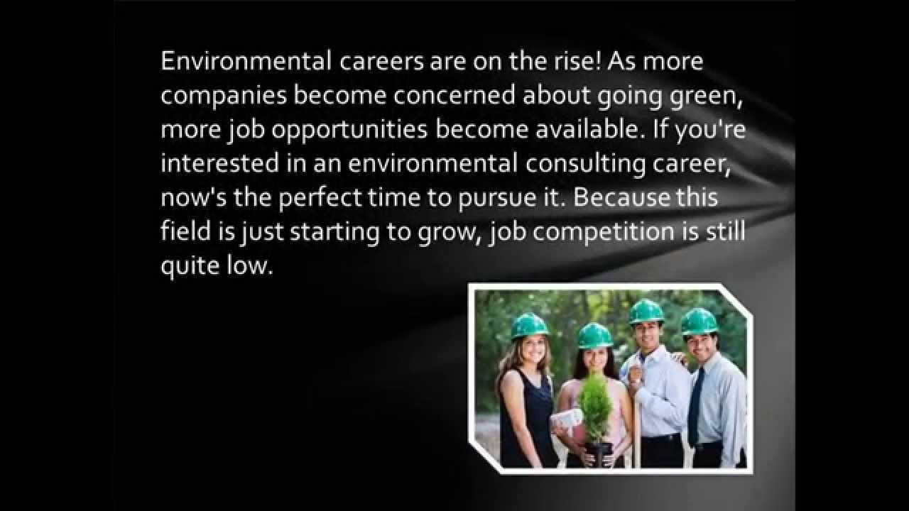 Building a Career Out of Environmental Consulting