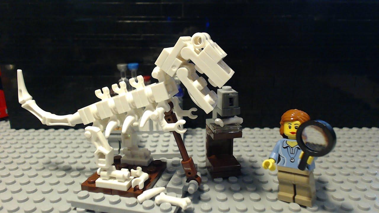 Lego Ausmalbilder Dinosaurier : Fantastisch Dinosaurier Skelett Bilder Ideen Menschliche Anatomie