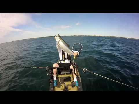 Lake Ontario: Giants of the deep July 23/16