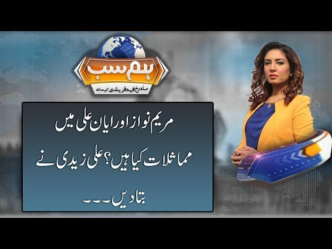 Ali Zaidi explains the similarity between Ayyan Ali and Maryam Nawaz