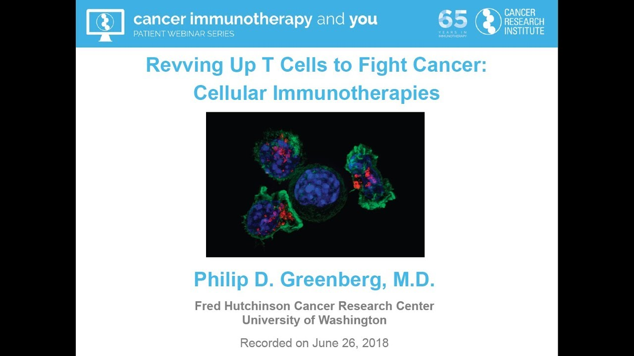 Adoptive Cell Therapy: CAR T, TCR, TIL, NK – Cancer Research