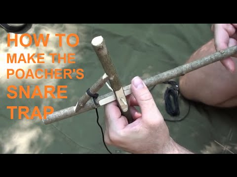How to make the poacher's snare trap