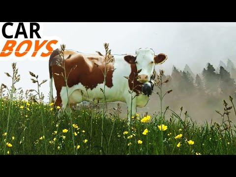 Nick and Griffin Head to Greener Pastures — CAR BOYS, Episode 36