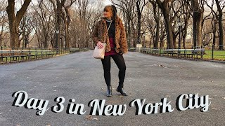 Day 3 in New York City | Central Park, Upper East Side, Financial District, etc