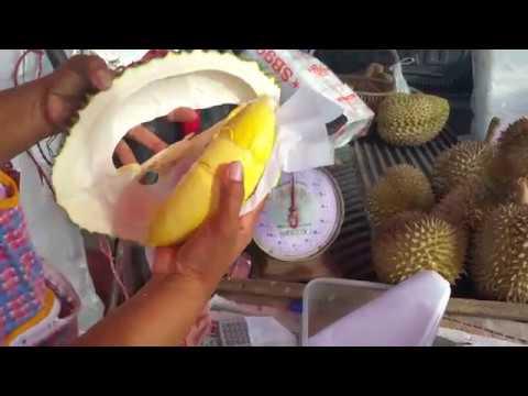 ซื้อ ทุเรียนก้านยาว รสชาติ ดีงาม!!  #Durian  Durian