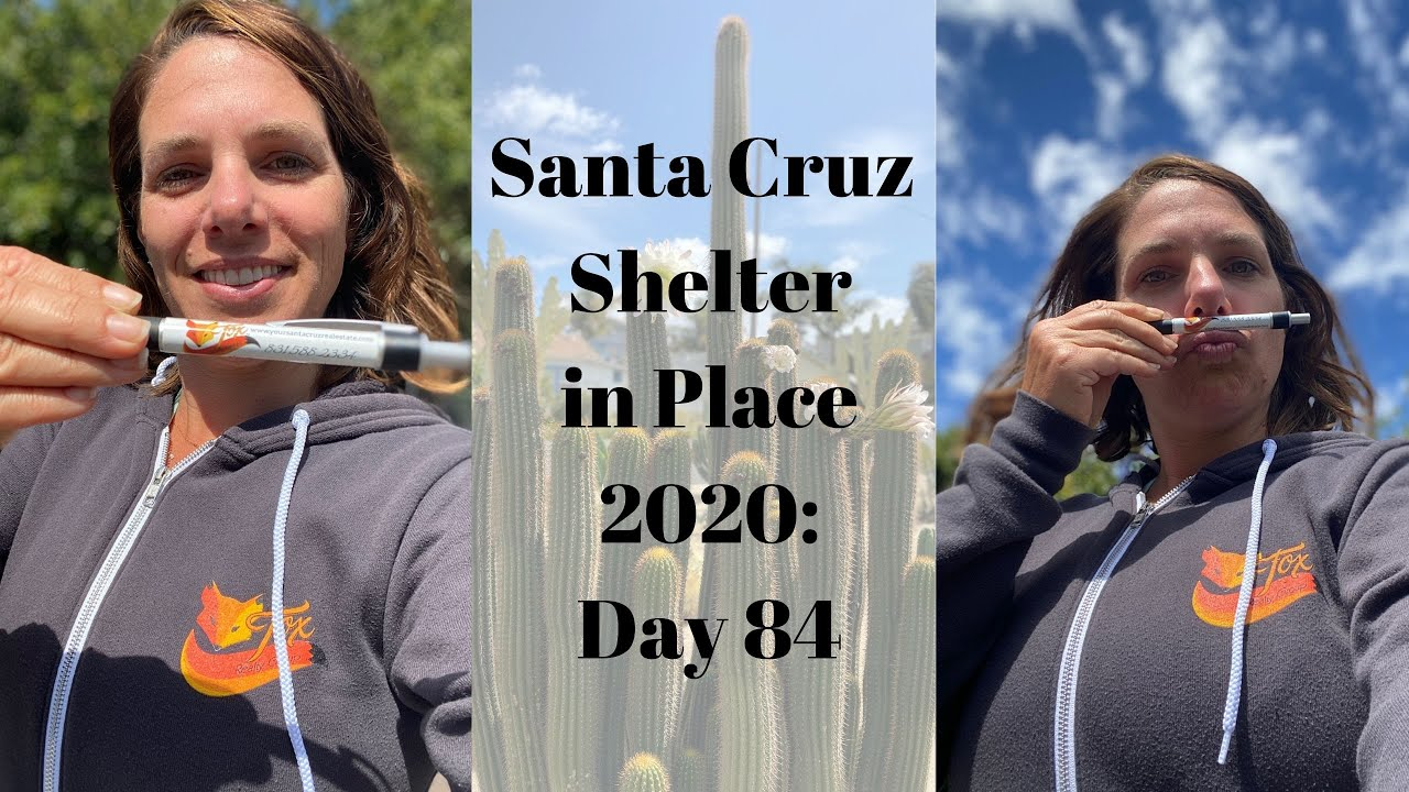 Santa Cruz Shelter in Place 2020: Day 84
