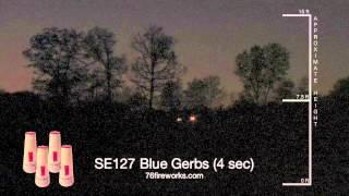 SE127 Blue Gerbs
