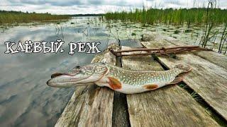 Рыбалка на щуку в Свердловской области на реке Реж сезон 2021
