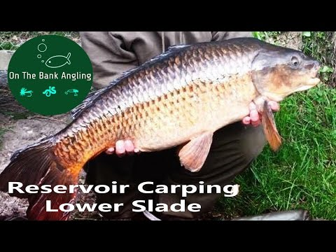 Reservoir Carp Fishing - Lower Slade , South West Lakes Trust