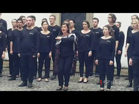 NZ Youth Choir's waiata performance resonates with international audience