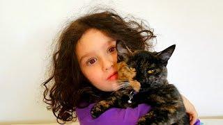 Кошка Матильда будит Алис по утрам) Обычное утро Алис Видео для детей Смешные кошки❤