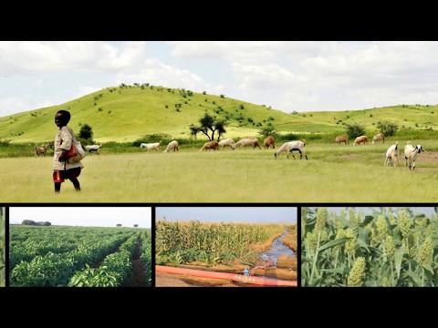 The Gash Barka Effect Eritrea lead Self Reliant Development Model ©EriStaruk Media
