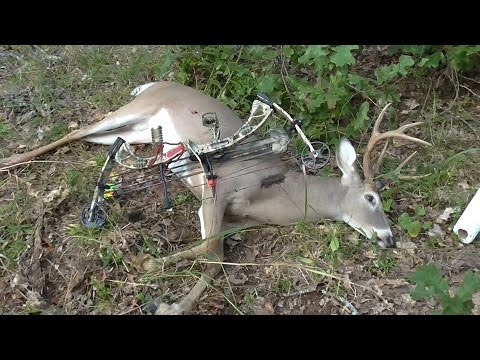2014 Arkansas Early Deer Season Bow Hunting - Fort Chaffee Hunt October 3 2014