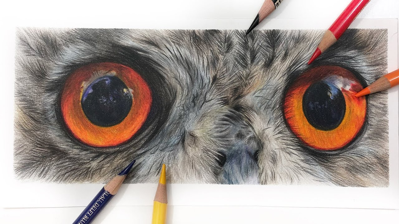 How To Draw Owl Eyes Colored Pencil Tutorial Youtube