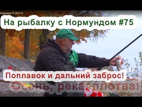 Ловля судака на москве реке осенью видео - Про рыбалку