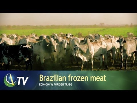 Brazilian frozen meat | Economy & Foreign Trade