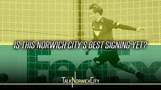 Is This Norwich City's Best Signing Yet?