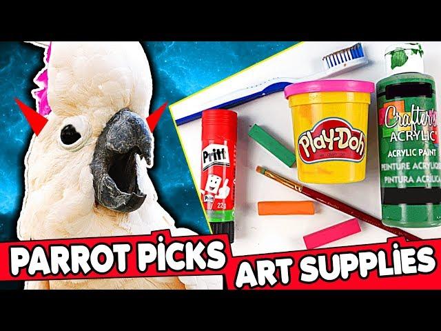 MY PARROT PICKS ART CRAFT SUPPLIES Challenge #3