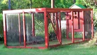 Urban Backyard Chicken Coop