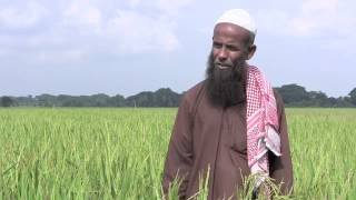 Helping farmers catch up in southwestern Bangladesh