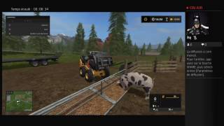 Farming simulator 2017 nourrir les cochons