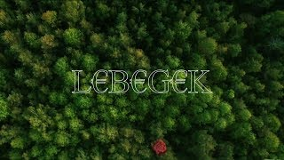 G€G€ - L€B€G€K (offo$ video)