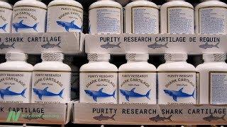 Rizika doplňků ze žraločí chrupavky