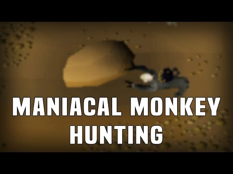 1 Hour of Maniacal Monkey Hunting