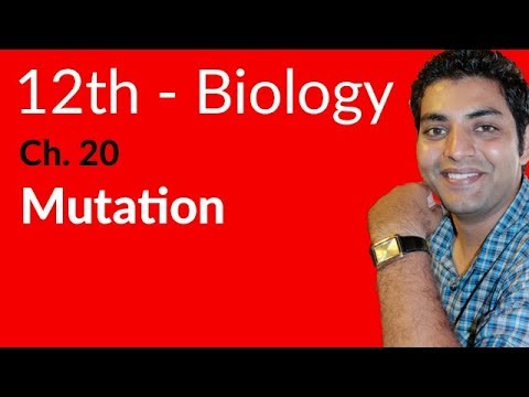 Mutation Biology - Biology Chapter 20 Chromosomes and DNA - FSC Part 2 Pre Medical 12th Class