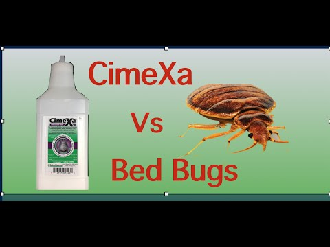 Cimexa Dust vs Bed Bugs - YouTube